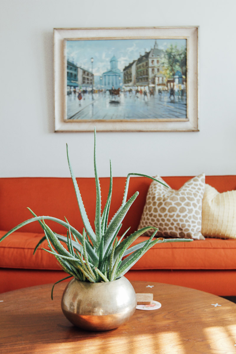 Sara and Rich Combs' Living Room | StyleComb