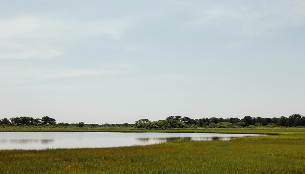 The Hamptons, NY | DesignComb