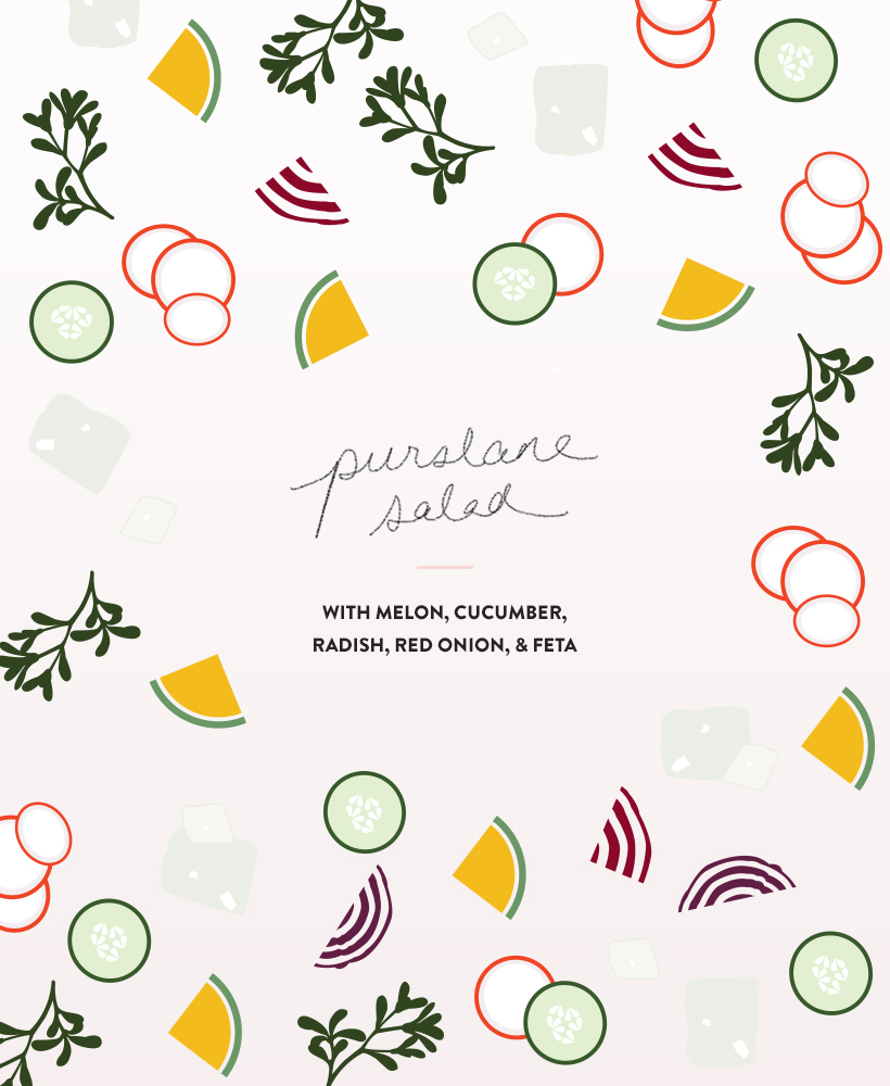 Purslane Salad recipe with melon, cucumber, radish, red onion, & feta | DesignComb