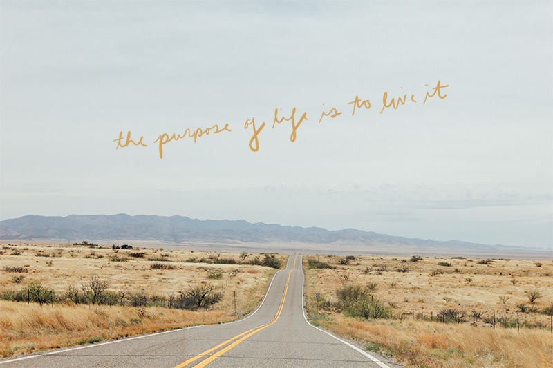 the purpose of life is to live it | DesignComb