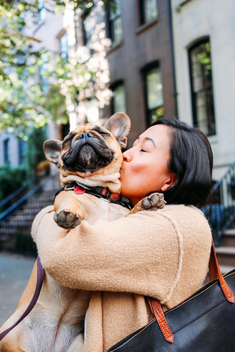 Victoria McGinley and her cute pup Lucy | DesignComb