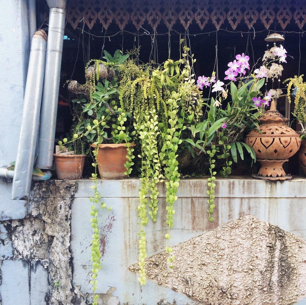 Chiang Mai Thailand | DesignComb