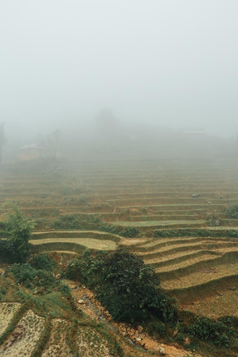 SaPa, Vietnam | DesignComb