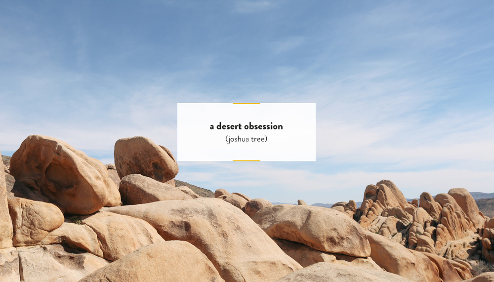 Joshua Tree, CA | DesignComb
