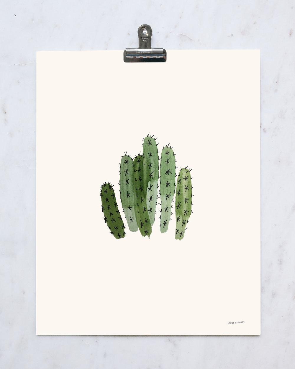 """Dagger Cactus 11x14"""" print"""