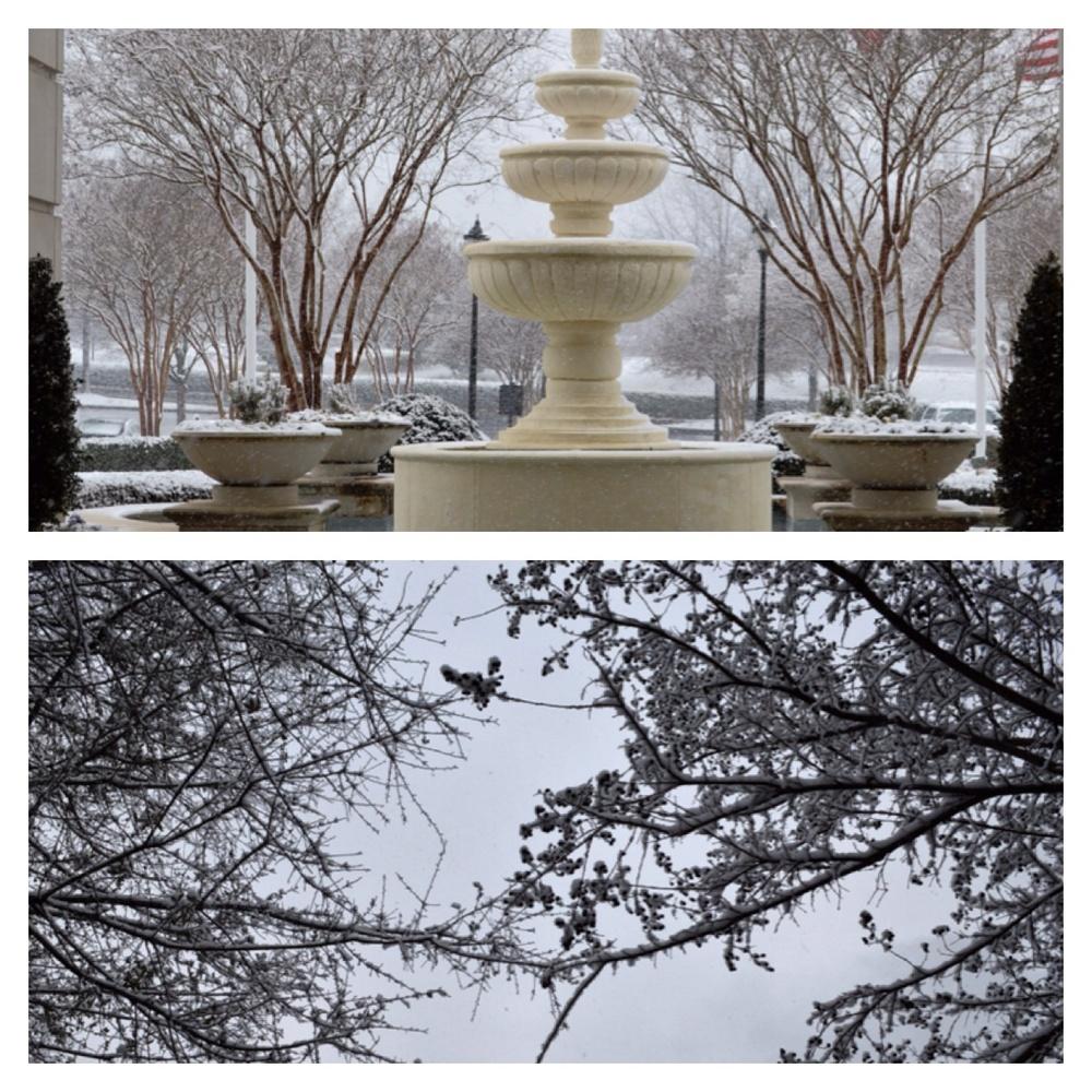 Snowy, Winter Day - CLT