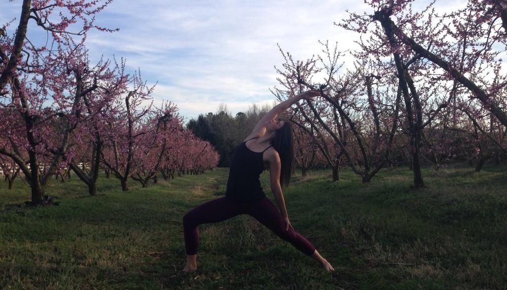 Peaceful Warrior - Lauren Schwaiger - Yoga