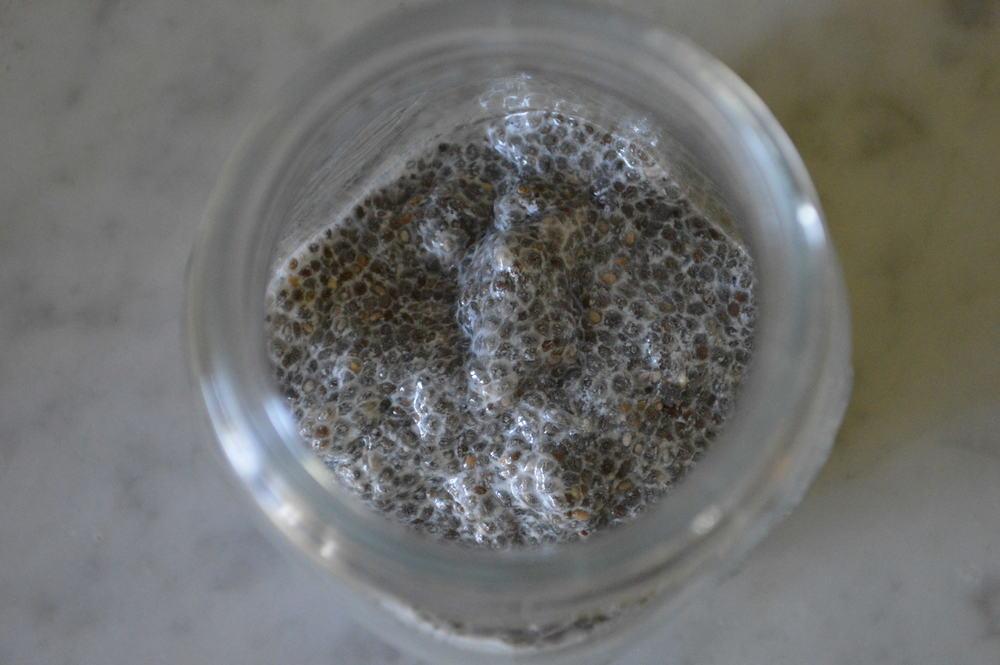 chia seeds + almond milk