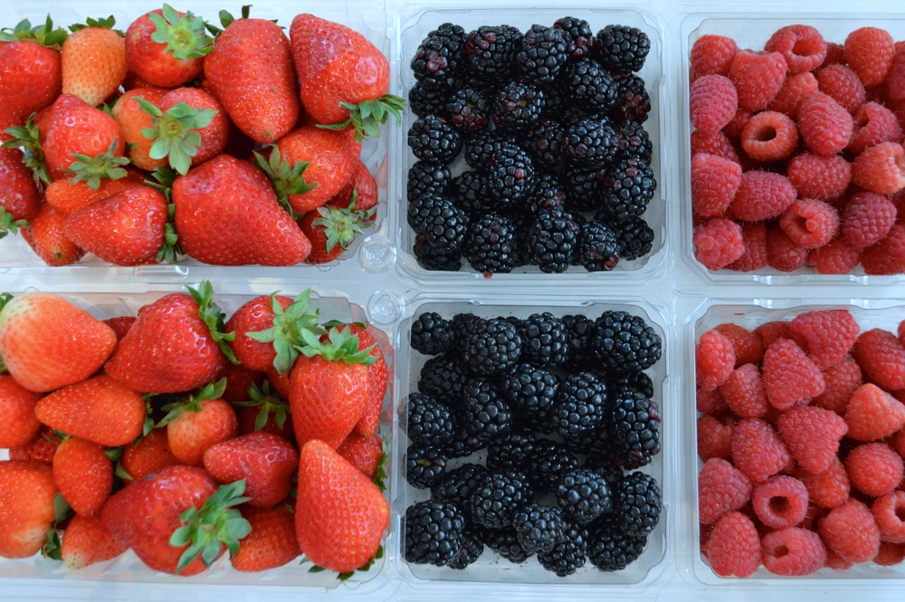 berries - fresh fruit