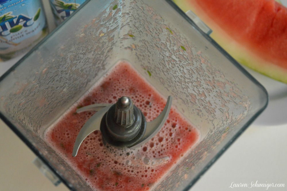 Watermelon + MInt in Blender