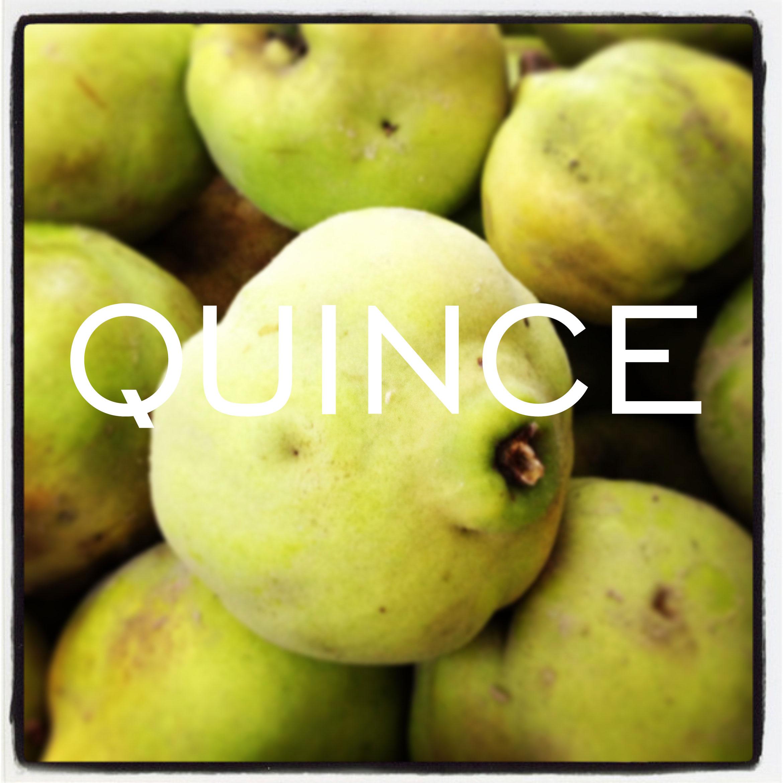 Quince-Organic2