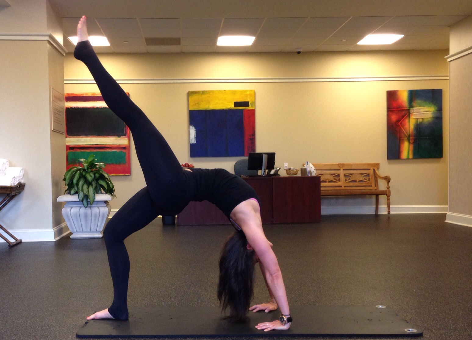 Wheel Pose - Yoga - Lauren Schwaiger