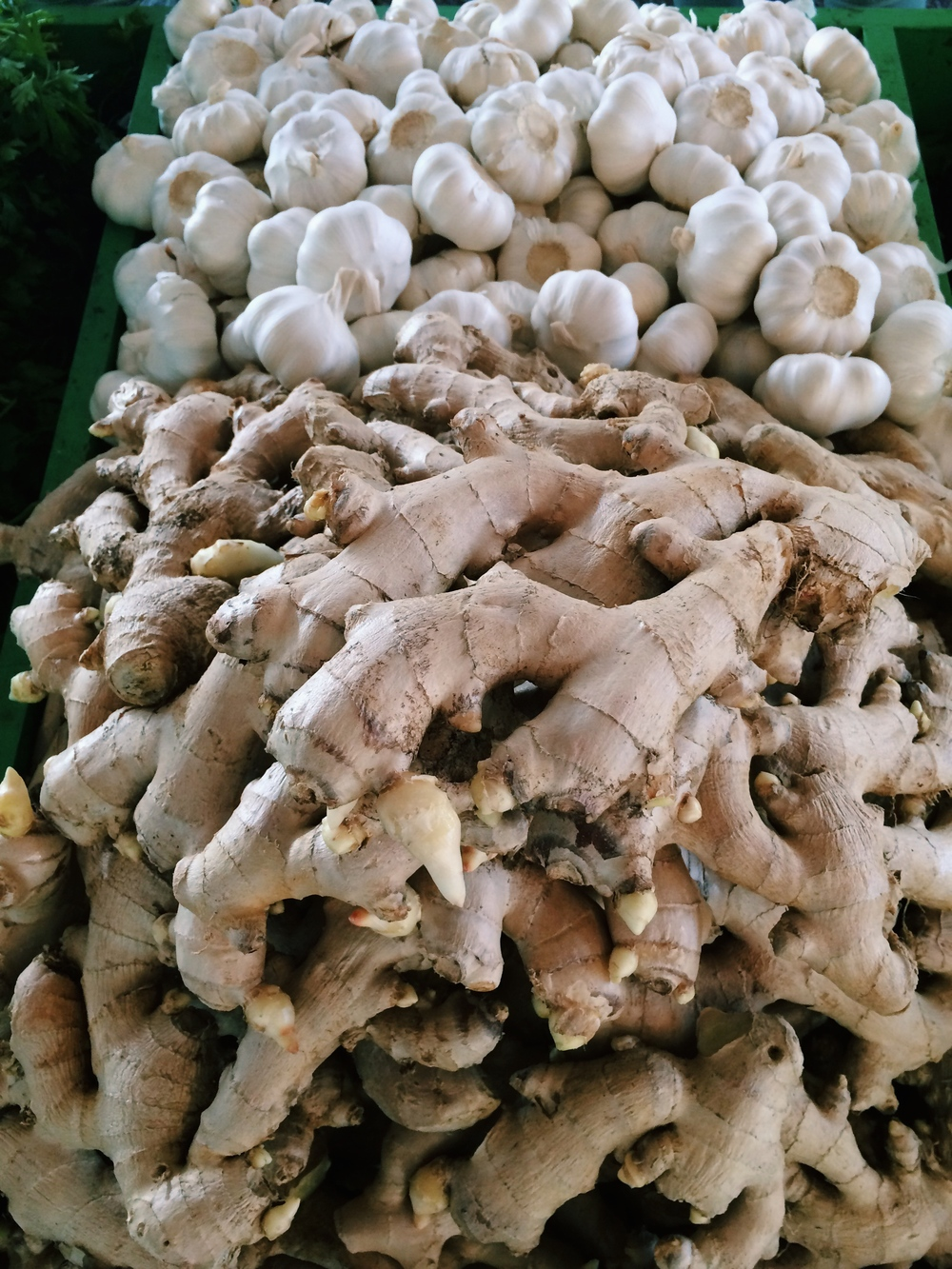 Lauren-Schwaige-Blog-Farmers-Market-Ginger-Garlic.jpg