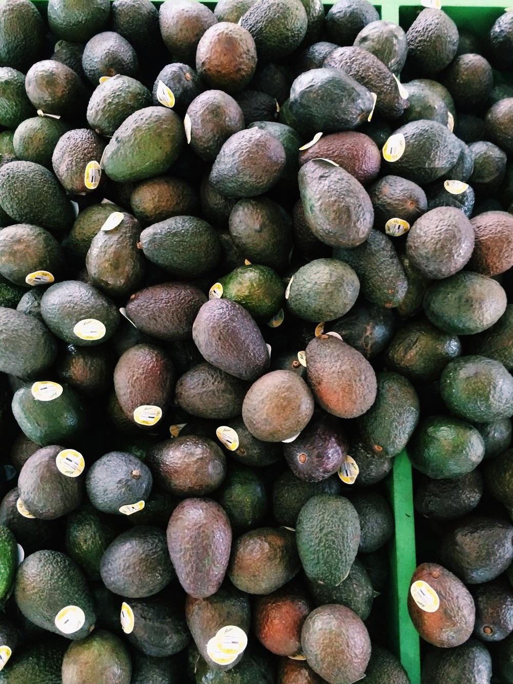 Charlotte-Farmers-market-Avocados-Lauren-Schwaiger-Blog.jpg