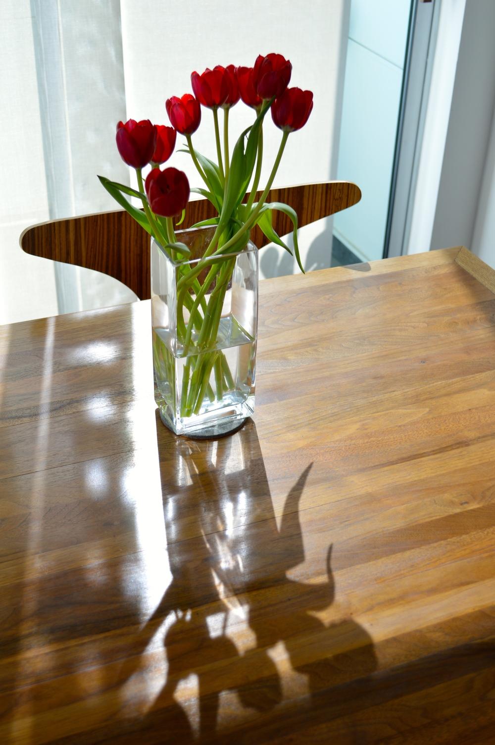 Lauren-Schwaiger-Blog-Flowers&Light-Photograph.jpg