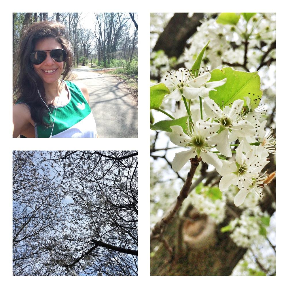 LaurnSchwaiger-Blog-Spring-Sunday-Walk.jpg