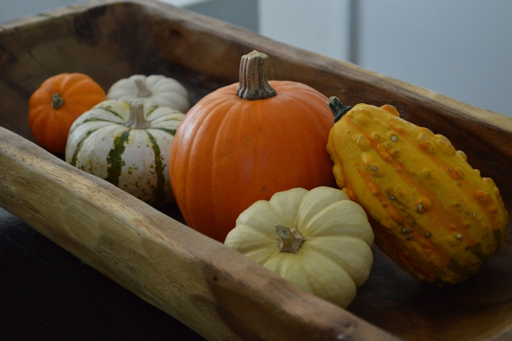 LaurenSchwaiger-Life-Style-Blog-Fall-Decor-Pumpkin-Squash.jpg