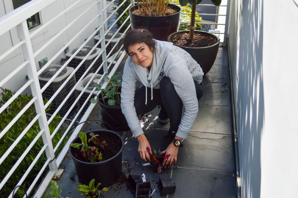 LaurenSchwager-Healthy-Life-Style-Blog-Winter-Vegetable-Garden.jpg