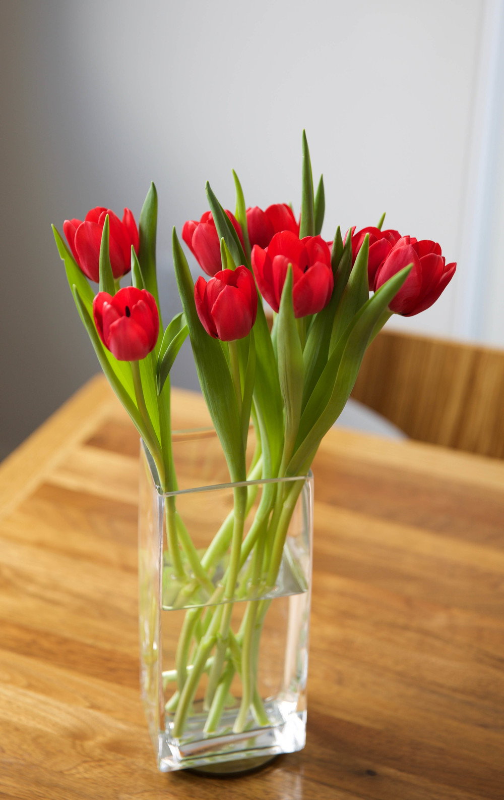 LaurenSchwaiger-Life-Style-Blog-Red-Tulips.jpg