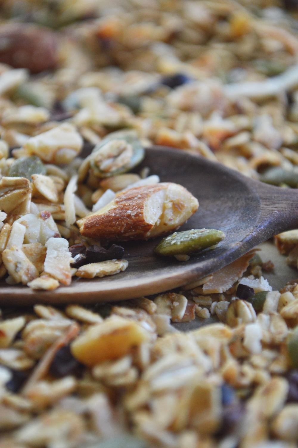 LaurenSchwaiger-Healthy-Lifestyle-Blog-Gluten-Free-Granola-Recipe.jpg
