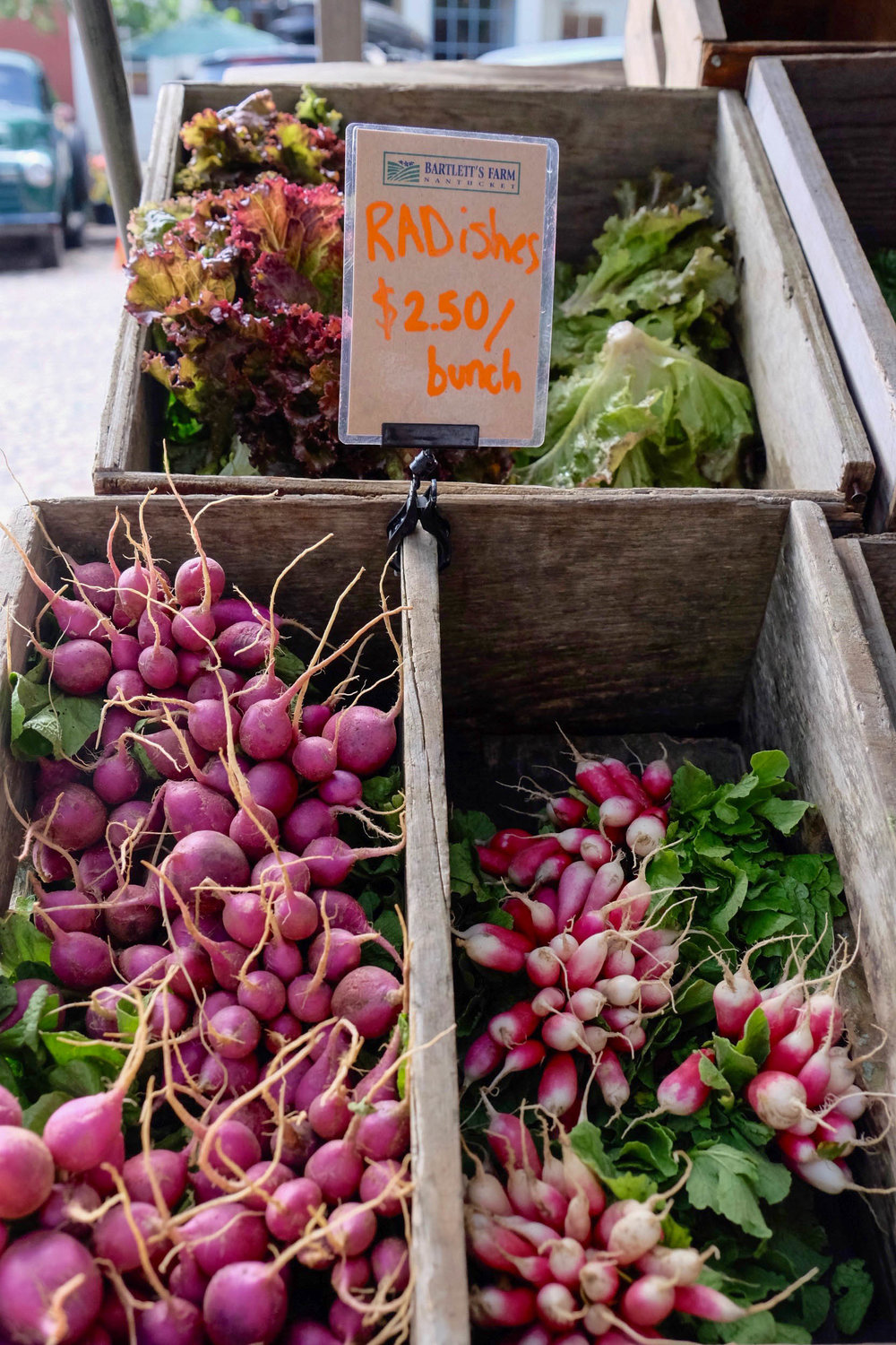 nantucket-farmers-market-radish-laurenschwaiger-lifestyle-travel-blog.jpg