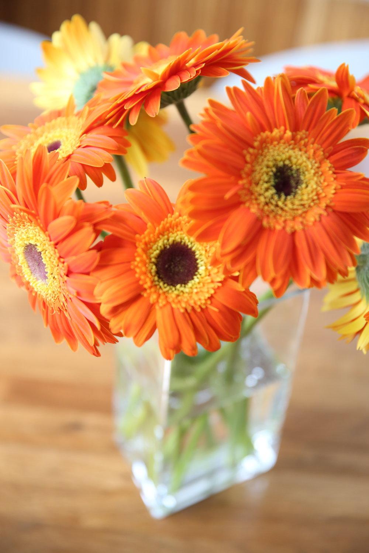 fresh-flowers-lauren-schwaiger-lifestyle-blog.jpg