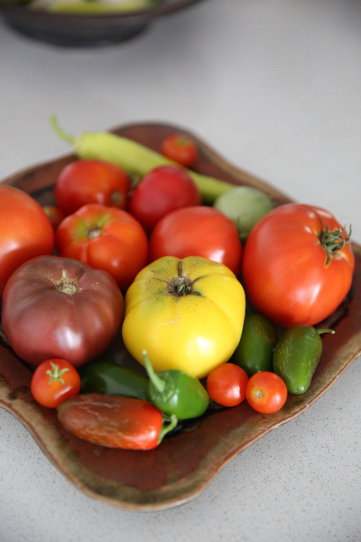 homegrown-tomatoes-lauren-schwaiger-healthy-lifestyle-blog.jpg