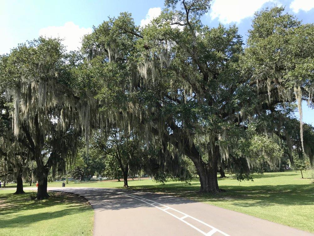 audubon-park-new-orleans-lauren-schwaiger-travel-blog.jpg