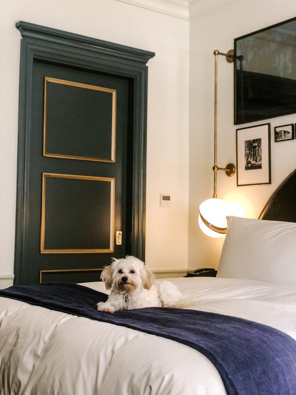 AshleyCampuzanoBlog_Nomad-Hotel_ACexplores_AshleyCampuzanoActress_@CampuzanoAshley_2.jpg