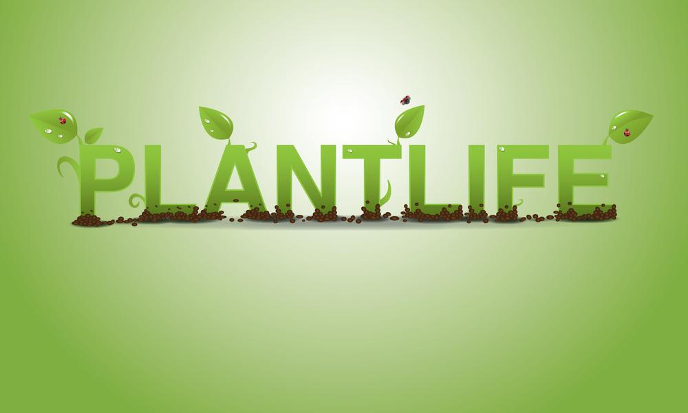 Plantlife-Logo.jpg