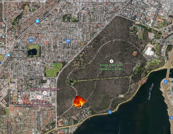 An area of Kings Park roughly the size of the MCG was intentionally set ablaze by scientists in pursuit of a better understanding of fire prevention