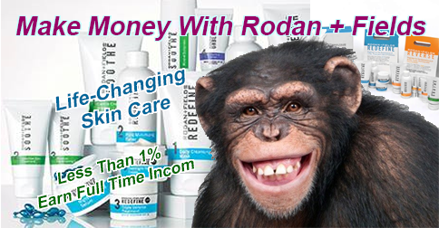 Can You Make Money With Rodan + Fields