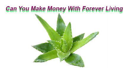 Can You Make Money With Forever Living