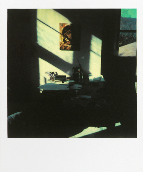 I guess Tarkovsky took a lot of polaroids during his life and his son  put them in a  book , which I hope somebody buys for me.