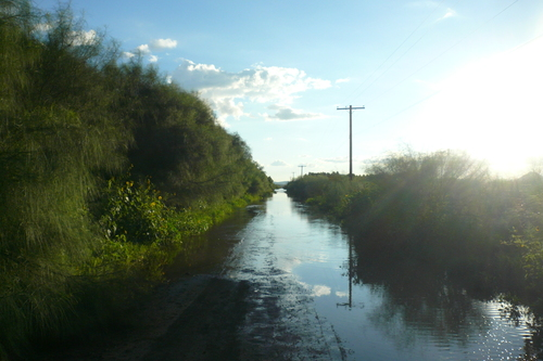 September 1st: Went ghost town hunting with Matt, but had to turn back when our road turned into a lake.