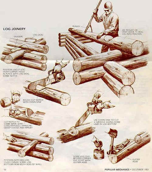 I've decided to build a log cabin and I'm one-hundred percent serious! Look how fun it will be!