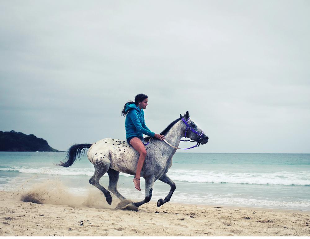 Sheridan.Nilsson.Horse.Portrait.06.jpg