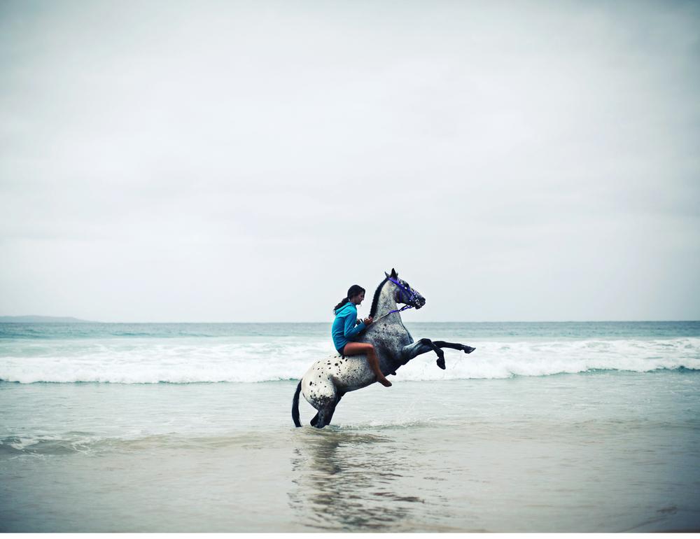 Sheridan.Nilsson.Horse.Portrait.02.jpg