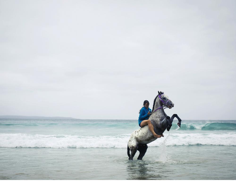 Sheridan.Nilsson.Horse.Portrait.04.jpg