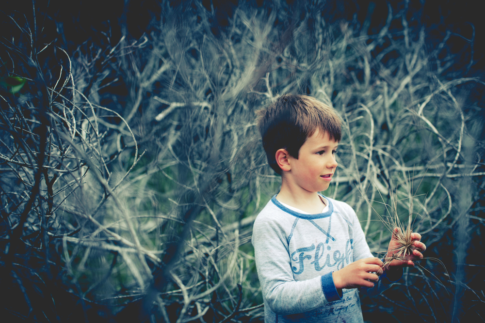 sheridan nilsson child portrait.2.JPG