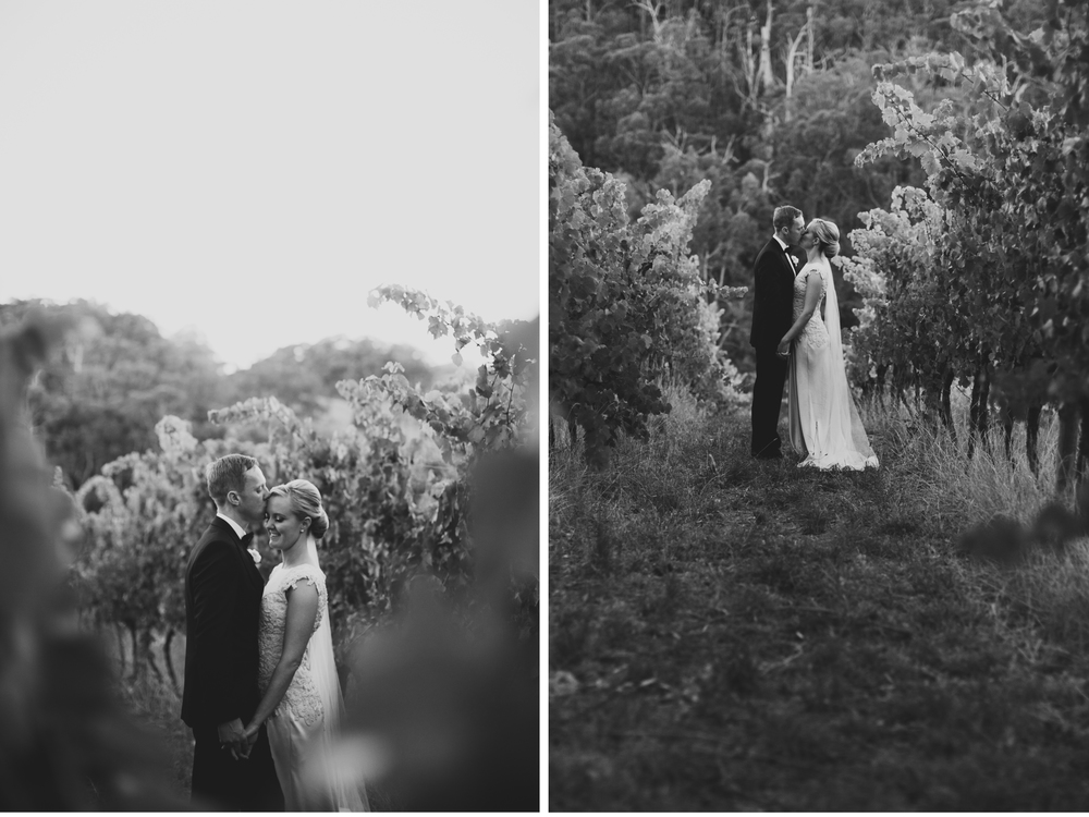 south_australia_winery_wedding.65.jpg