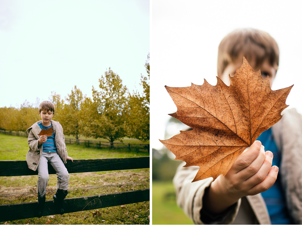 sheridan_nilsson_autumn_blog.03.jpg