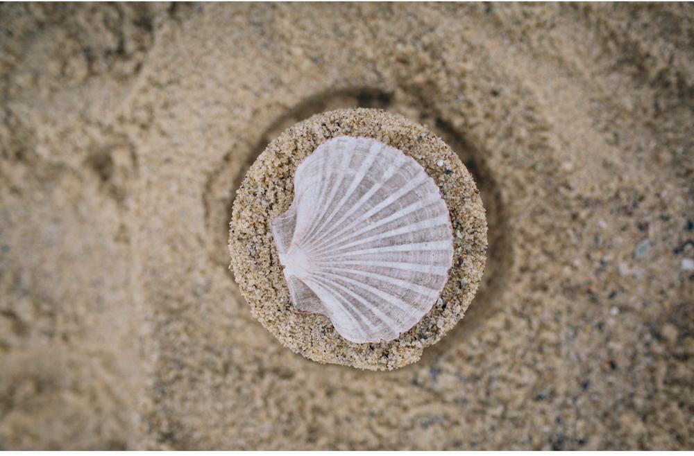 sheridan_nilsson_bronte_beach.18.jpg