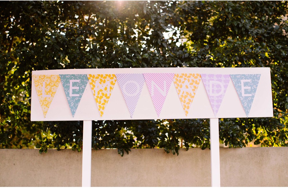 lemonade_stand.05 copy.jpg