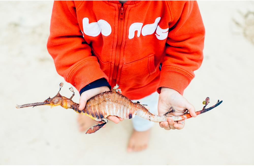 sheridan_nilsson_sydney_child_photographer_beach_portraits.07.jpg