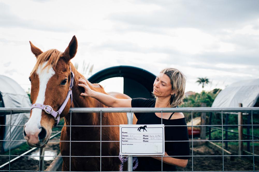 sheridan_nilsson_la perouse_horse.-11.jpg