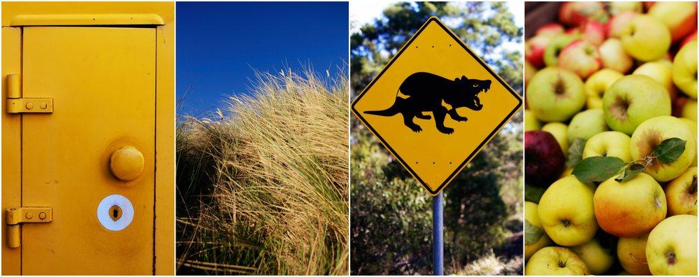 Sheridan_Nilsson_Tasmania.02.jpg