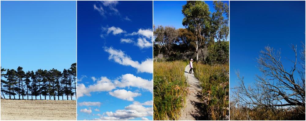 Sheridan_Nilsson_Tasmania.10.jpg