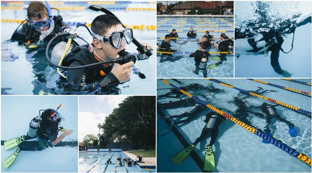Zara zWC.Diving.02.jpg