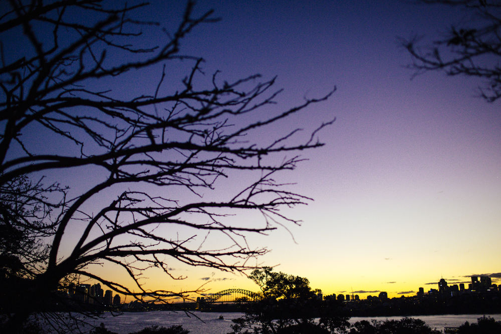 Athol_Hall_Wedding_Sydney_Harbour.01.jpeg